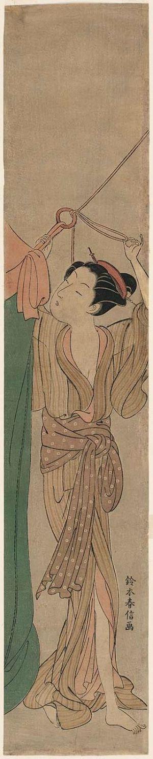 Suzuki Harunobu: Young Woman Hanging a Mosquito Net - Museum of Fine Arts