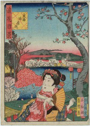 Nansuitei Yoshiyuki: Ajihara Pond at the Ubuyu Shrine (Ubuyu Ajihara-ike), from the series One Hundred Views of Osaka (Naniwa hyakkei) - Museum of Fine Arts