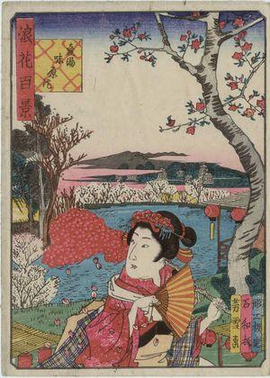 Nansuitei Yoshiyuki: Ajihara Pond at the Ubuyu Shrine (Ubuyu Ajihara-ike), from the series One Hundred Views of Osaka (Naniwa hyakkei) - ボストン美術館