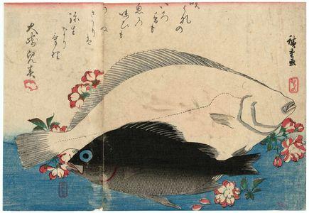 歌川広重: Halibut, Plaice, and Wild Cherry, from an untitled series known as Large Fish - ボストン美術館