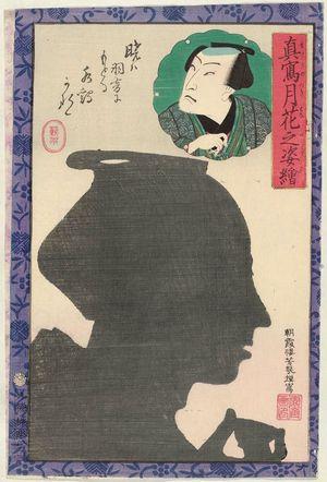 Ochiai Yoshiiku: from the series Portraits as True Likenesses in the Moonlight (Makoto no tsukihana no sugata-e) - Museum of Fine Arts