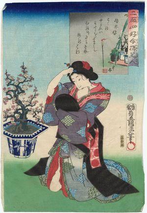 歌川国貞: Fond of Potted Plants (Ueki kô), from the series Twenty-four Enjoyments of Beauties of the Present Day (Nijûshi kô tôji no hanamono) - ボストン美術館