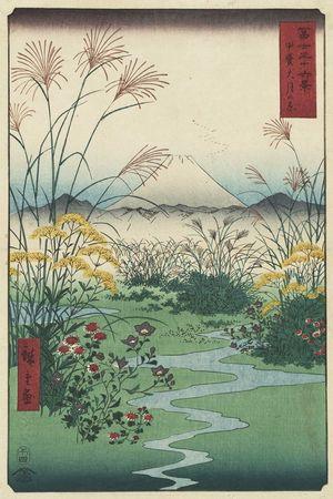 歌川広重: Ôtsuki Plain in Kai Province (Kai Ôtsuki no hara), from the series Thirty-six Views of Mount Fuji (Fuji sanjûrokkei) - ボストン美術館