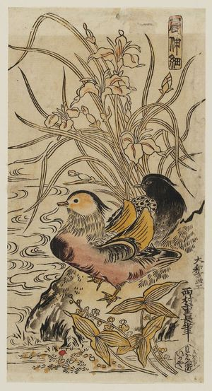西村重長: Mandarin Ducks, Iris, and Arrowheads - ボストン美術館