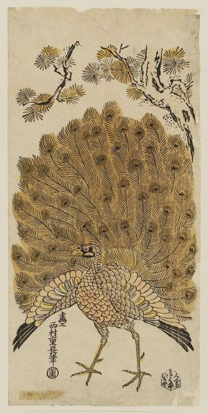 Nishimura Shigenaga: Peacock Displaying His Plumage - Museum of Fine Arts