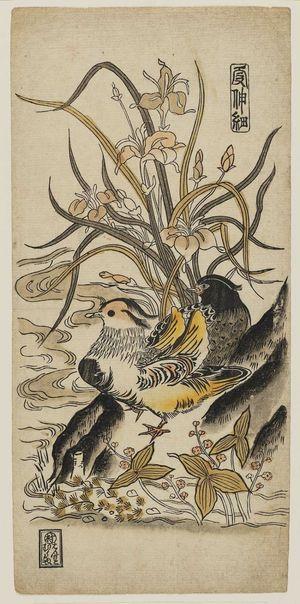 Nishimura Shigenaga: Mandarin Ducks, Iris, and Arrowheads. Series: Ka Shin Sai. - Museum of Fine Arts