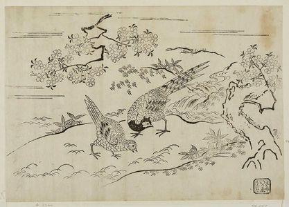 西村重長: Pheasants under Cherry Tree - ボストン美術館