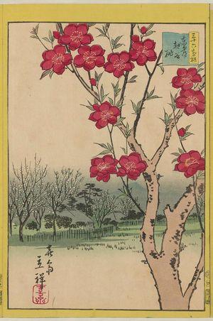 二歌川広重: Peach Blossoms at Koshigaya in the Eastern Capital (Tôto Koshigaya momo), from the series Thirty-six Selected Flowers (Sanjûrokkasen) - ボストン美術館