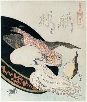 魚屋北渓: Kanagawa, from the series Souvenirs of Enoshima, a Set of Sixteen (Enoshima kikô, jûrokuban tsuzuki) - ボストン美術館