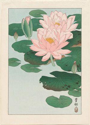 Ohara Koson: Water Lilies - Museum of Fine Arts