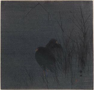 Seiko: Two Water-hens among reeds. - Museum of Fine Arts