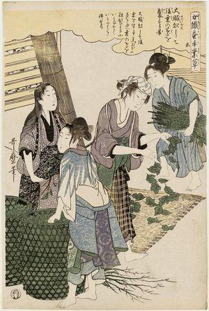 喜多川歌麿: No. 5 from the series Women Engaged in the Sericulture Industry (Joshoku kaiko tewaza-gusa) - ボストン美術館