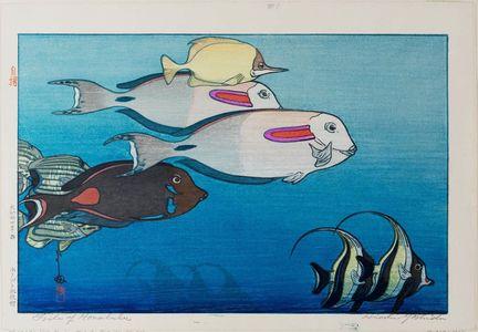 吉田博: Fishes of Honolulu (Honoruru suizokukan [Honolulu Aquarium]) - ボストン美術館