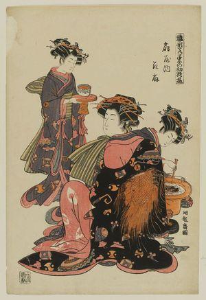 磯田湖龍齋: Hanaôgi of the Ôgiya, from the series Models for Fashion: New Year Designs as Fresh as Young Leaves (Hinagata wakana no hatsu moyô) - ボストン美術館