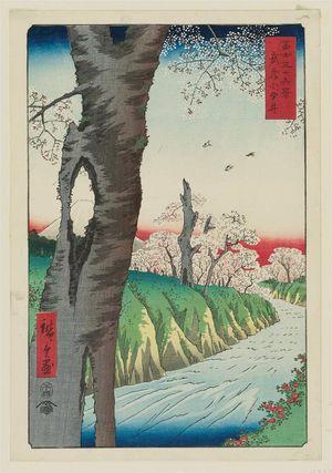 Utagawa Hiroshige: Koganei in Musashi Province (Musashi Koganei), from the series Thirty-six Views of Mount Fuji (Fuji sanjûrokkei) - Museum of Fine Arts