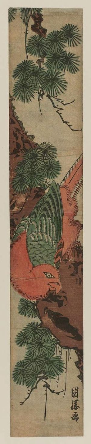 Utagawa Kuniteru: Parrot in Pine Tree - Museum of Fine Arts