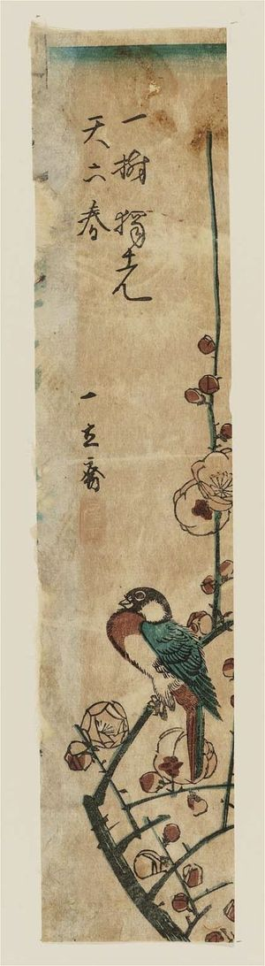 Utagawa Hiroshige: Bird on Plum Branch - Museum of Fine Arts