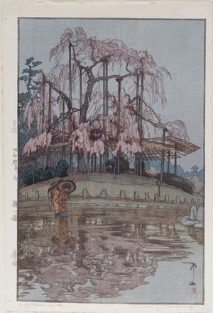 吉田博: Harusame (Spring Rain), from the series Eight Scenes of Cherry Blossoms (Sakura hachidai) - ボストン美術館