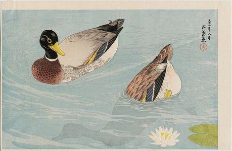 Hashiguchi Goyo: Two Ducks - Museum of Fine Arts