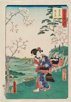 二歌川広重: Tossing Saucers at Asuka Hill (Asukayama... ), from the series The Pride of Edo: Thirty-six Scenes (Edo jiman sanjû rokkei) - ボストン美術館