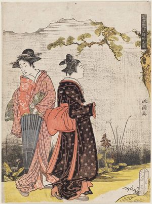 Kitao Masanobu: Women Walking, from the series Ten Patterns of Alluring Figures in the Modern World (Tôsei enshi jukkei no zu) - ボストン美術館