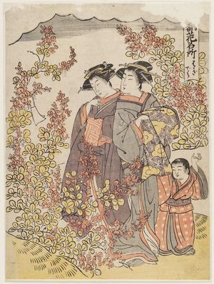 Kitao Masanobu: Hagidera, from the series Places in the Eastern Capital Famous for Flowers (Tôto hana meisho) - ボストン美術館