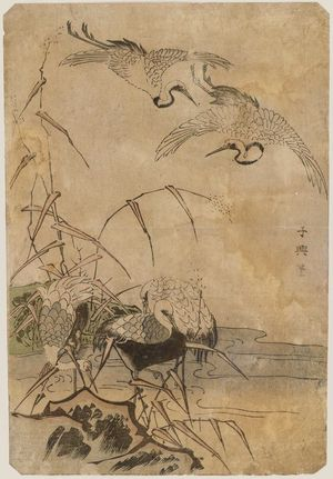 Eishosai Choki: Cranes - Museum of Fine Arts