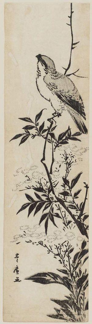 Utagawa Toyohiro: Bird on a branch of a flowering plant - Museum of Fine Arts