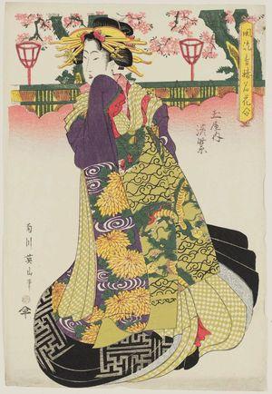 菊川英山: ? of the Tamaya, from the series A Fashionable Comparison of the Famous Flowers of the Pleasure Quarters (Fûryû seirô meika awase) - ボストン美術館