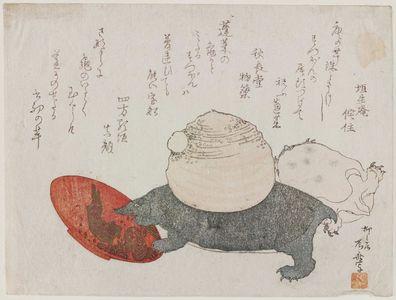 柳々居辰斎: Two Turtles, One with a Yam (yama imo) on its Back, Stepping on a Sake Cup - ボストン美術館