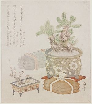 Ryuryukyo Shinsai: Bundles of Iron and Copper Ingots with a Potted Sago Palm, Plum, and Adonis Plant - Museum of Fine Arts