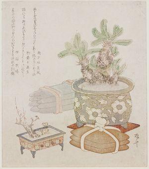 柳々居辰斎: Bundles of Iron and Copper Ingots with a Potted Sago Palm, Plum, and Adonis Plant - ボストン美術館