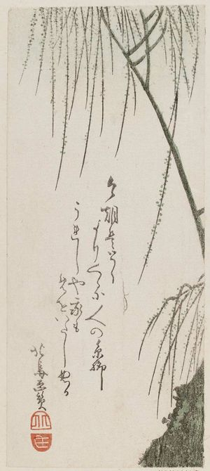 Teisai Hokuba: Willow branches - Museum of Fine Arts