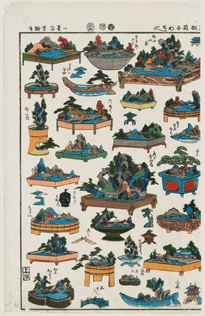 Utagawa Yoshitsuna: Collection of Tray Gardens (Hakoniwa zukushi) - ボストン美術館