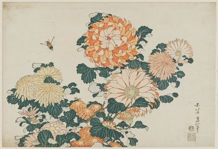 葛飾北斎: Chrysanthemums and Horsefly, from an untitled series known as Large Flowers - ボストン美術館
