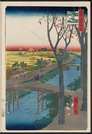 Utagawa Hiroshige: Koume Embankment (Koumezutsumi), from the series One Hundred Famous Views of Edo (Meisho Edo hyakkei) - Museum of Fine Arts