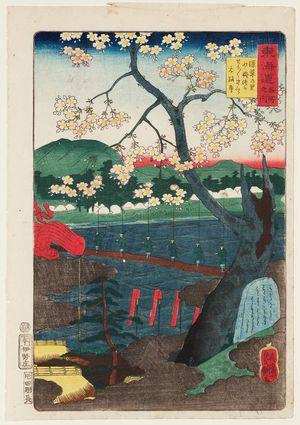 歌川芳艶: Fukakusa Village, Grave of Shôshô, Cherry Tree of Shôshô, Gensei-ji Temple, from the series Scenes of Famous Places along the Tôkaidô Road (Tôkaidô meisho fûkei), aka Processional Tôkaidô (Gyôretsu Tôkaidô), here called Tôkaidô meisho no uchi - ボストン美術館