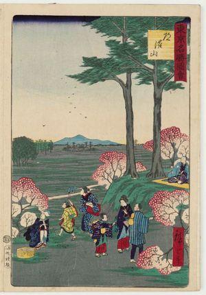 Utagawa Hiroshige III: Dôkan Hill (Dôkan-yama), from the series Famous Places in Tokyo (Tôkyô meisho zue) - Museum of Fine Arts