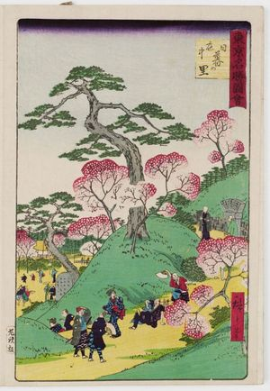 Utagawa Hiroshige III: Cherry Blossoms in Full Bloom at Nippori (Sakari-chû Nippo no sato), from the series Famous Places in Tokyo (Tôkyô meisho zue) - Museum of Fine Arts