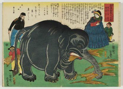 歌川芳豊: Great Elephant Recently Imported from Overseas (Shin tohakurai no dai zô) - ボストン美術館