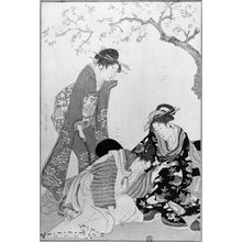 Kitagawa Utamaro: Two Women and a Young Man Under a Cherry Tree - Museum of Fine Arts