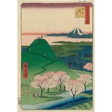Utagawa Hiroshige: New Fuji, Meguro (Meguro Shin-Fuji), from the series One Hundred Famous Views of Edo (Meisho Edo hyakkei) - Museum of Fine Arts