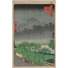二歌川広重: NIght Rain at Akasaka Kiribatake (Akasaka Kiribatake uchû yûkei), from the series One Hundred Famous Views of Edo (Meisho Edo hyakkei) - ボストン美術館