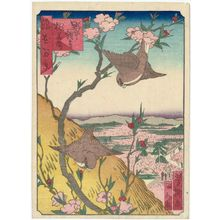 Utagawa Yoshitaki: Peach Blossoms in Bloom at Nonaka Kannon Temple (Nonaka Kannon momohana sakari), from the series One Hundred Views of Osaka (Naniwa hyakkei) - Museum of Fine Arts