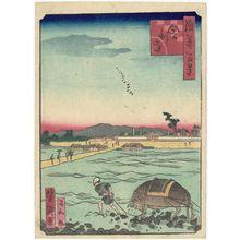 歌川芳滝: Shari-ji Temple (Shari-ji), from the series One Hundred Views of Osaka (Naniwa hyakkei) - ボストン美術館