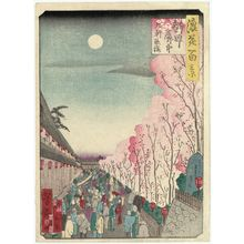 Utagawa Yoshitaki: Cherry Blossoms in the Evening at Kuken in the Shinmachi Licensed Quarter (Shinmachi kakuchû Kuken yozakura), from the series One Hundred Views of Osaka (Naniwa hyakkei) - Museum of Fine Arts