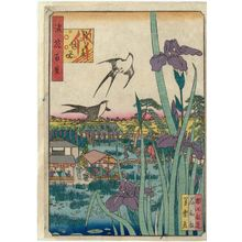 Nansuitei Yoshiyuki: Irises at Urae (Urae kakitsubata), from the series One Hundred Views of Osaka (Naniwa hyakkei) - ボストン美術館