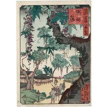 歌川芳滝: Wisteria in Noda (Noda fuji), from the series One Hundred Views of Osaka (Naniwa hyakkei) - ボストン美術館