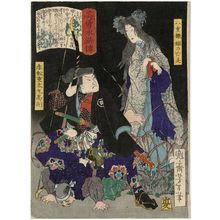 Tsukioka Yoshitoshi: The Ghost of Yaehatahime (Yaehatahime no bôrei) and Akamatsu Jûtamaru Takanori, from the series Sagas of Beauty and Bravery (Biyû Suikoden) - Museum of Fine Arts