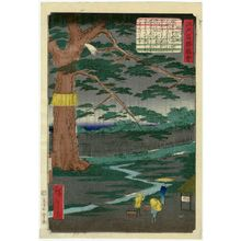 Utagawa Hiroshige II: The Pine Tree of the Imperial Procession (Miyuki no matsu), from the series Views of Famous Places in Edo (Edo meishô zue) - Museum of Fine Arts